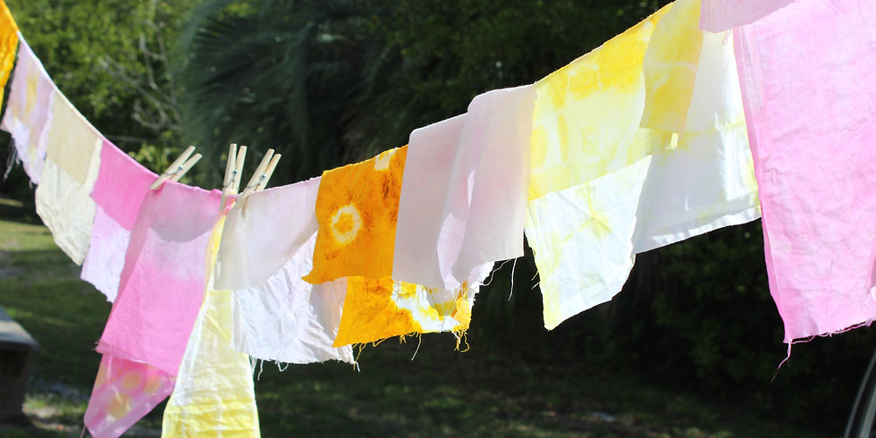 Dyeing with Plant Based Dyes