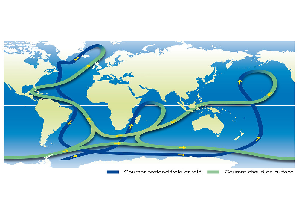 Map of oceans currents.