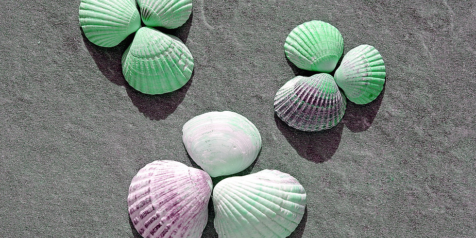 Shell Ornament Class