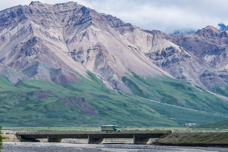 A concessioner-operated tour bus on Denali Park Road, the only road in the park, stretching 92 miles.