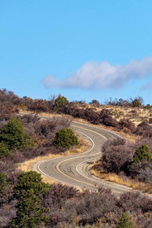 Mesa Top Loop Road surrounded by beautiful brush in fall 2016.