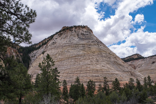 Checkerboard Mesa. Simply marvelous, the intricacies of this rock!