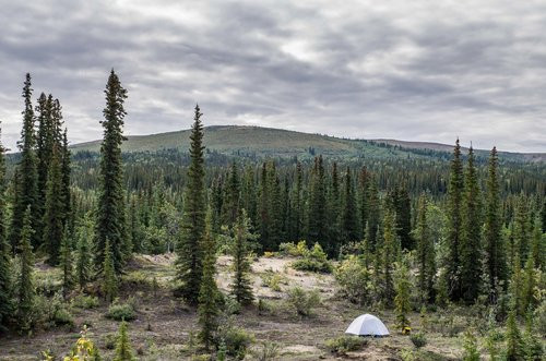 We camped along a river bed in a more forested area, and made forays into the dunes each day.
