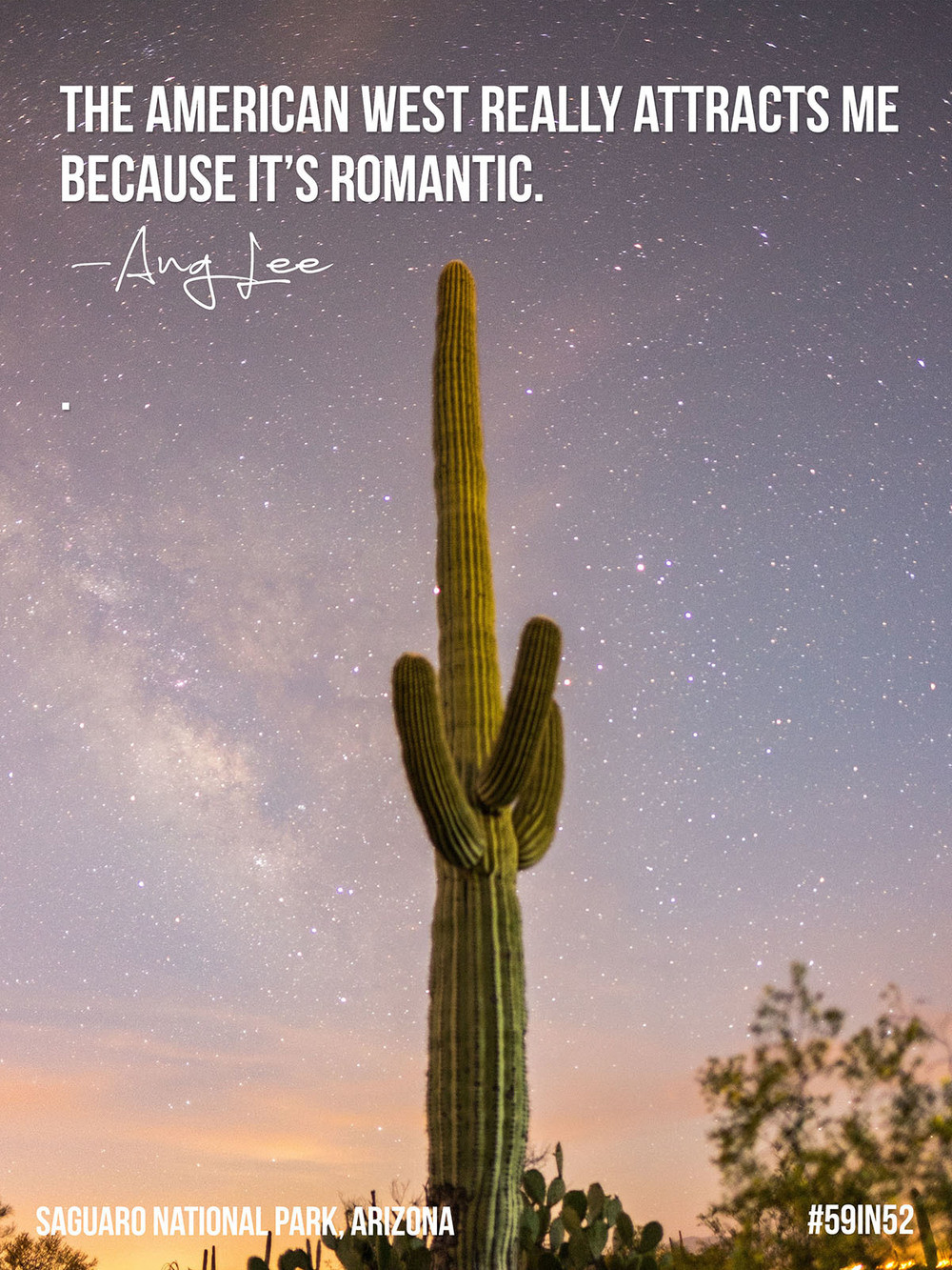 Shareable-saguaro_02