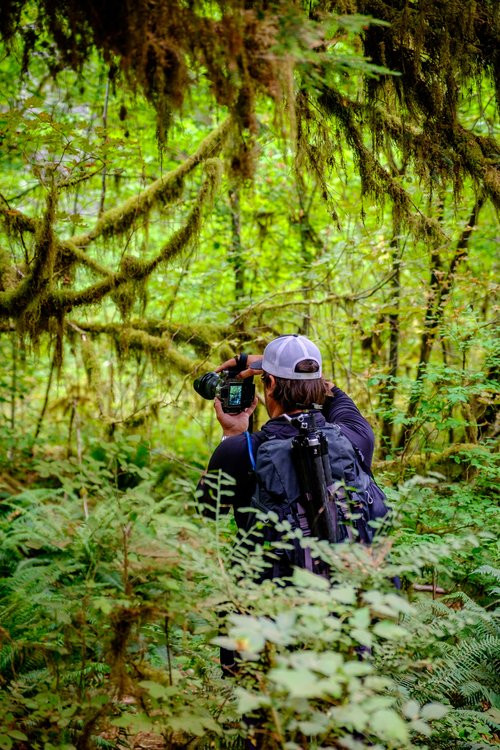 Jonathan knee-deep in the Hoh Rainforest with his Fujifilm XT-1.