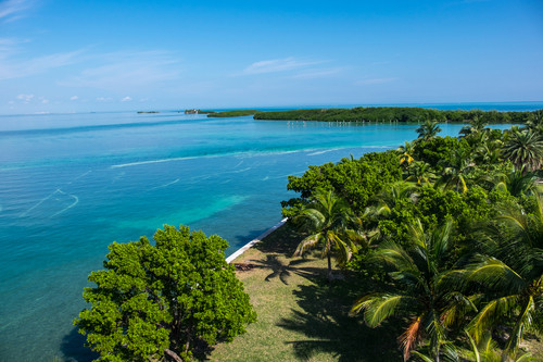 View from the Boca Chita Lighthouse. | Credit: Stefanie Payne