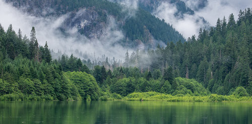 Every shade of immaculate green can be found in the North Cascades—it's a never ending deep breath of the cleanest, greenest air!