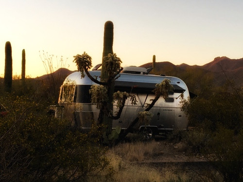 This isn't Wally the Airstream, but we found many caravan friends at the Gilbert Ray Campsite in Saguaro West. Love the way it is all nestled away, protected by trees.