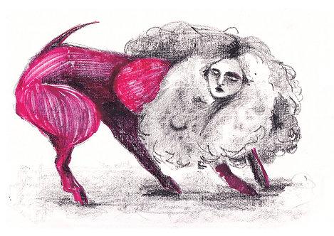 Ilustração Carne Viva