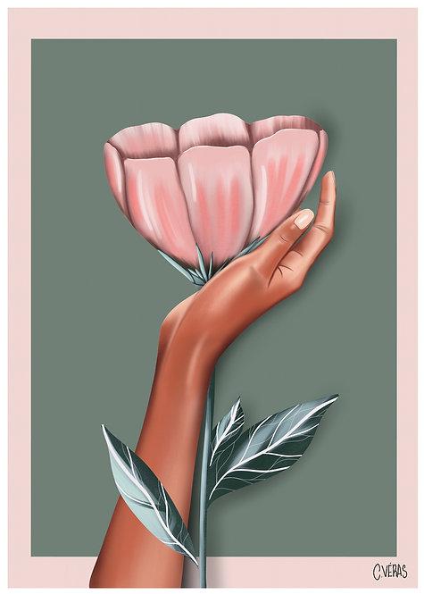 Ilustração Hand