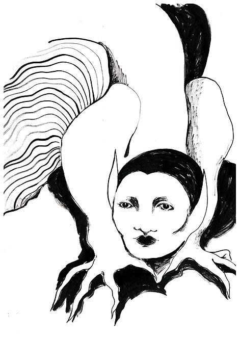 Ilustração Salamandra