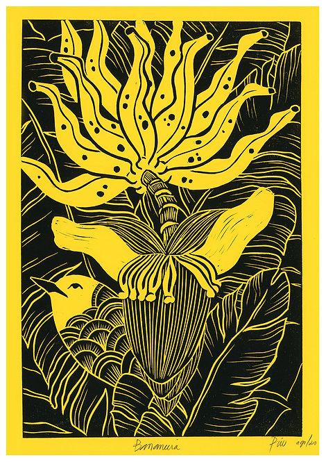 Ilustração Bananeira