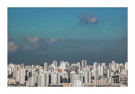 Fotografia A cidade do alto do Edifício Martinelli