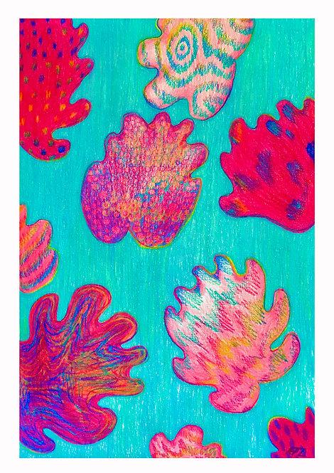 Ilustração Algas
