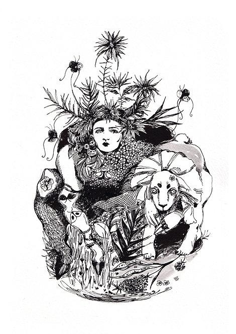 Ilustração Quimeras