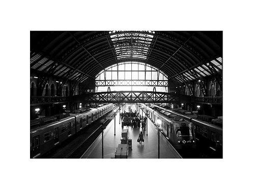 Fotografia Estação da Luz -SP