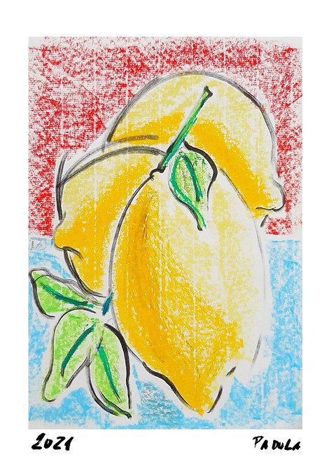 Ilustração Limões Sicilianos