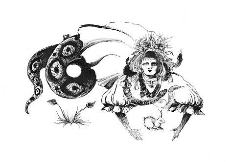 Ilustração Cobra e Coelho