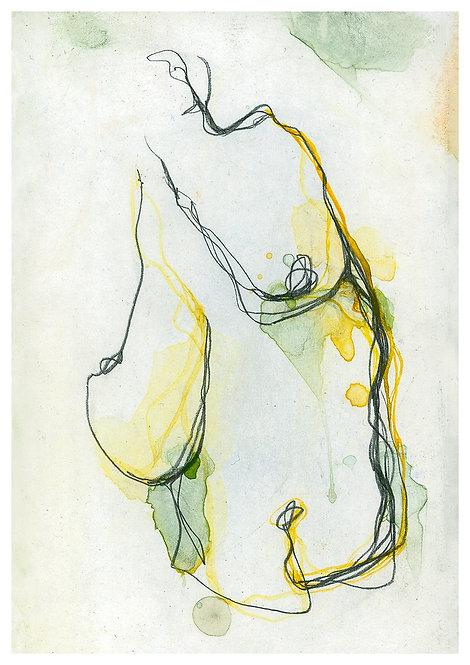 Ilustração Ventre