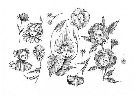 Ilustração Flores