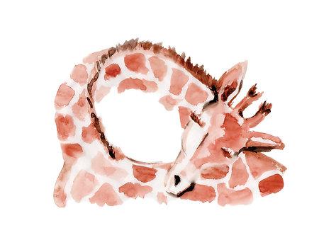 Ilustração Abraço de Girafa