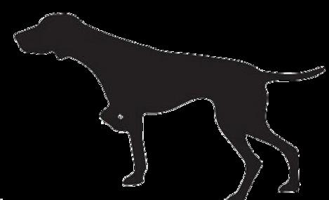 pointer silhouette VECTOR