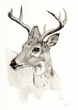 'Deer' Original Artwork