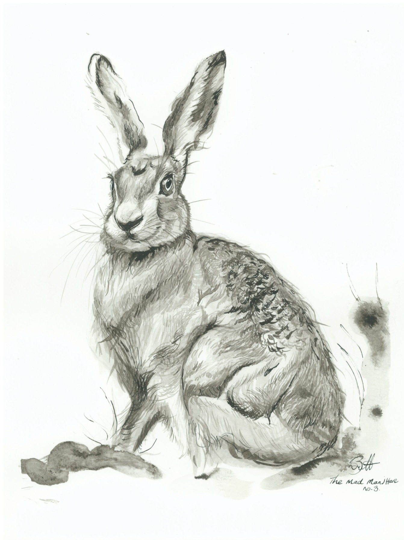 The Mad Manj Hare no.3