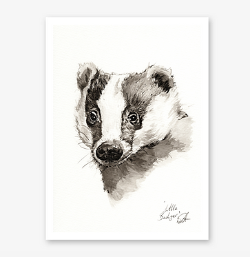 'Little Badger' Print