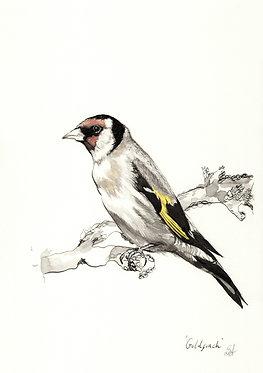 'Goldfinch' Original Artwork