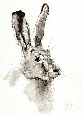 'Hare' Original Artwork