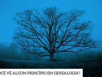 Você vê algum princípio em genealogia?