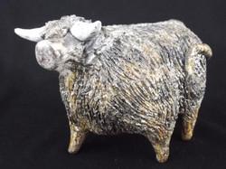 Highland Bull.
