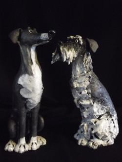 Greyhound and Schnauzer