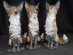 Trio of Foxes.