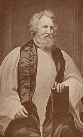 JohnHenryHopkinswiki.jpg