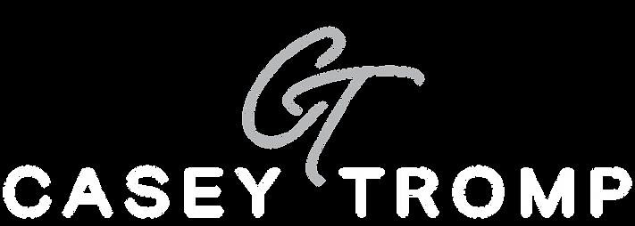 new ct logo gray.png