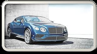 Elite-auto-detailing-Beaumont TX-Paint-P