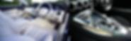 Elite-auto-sheild-car-detailing-beaumont