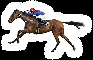 PIEROS FUERTEVENTURA - HORSE RACING.png