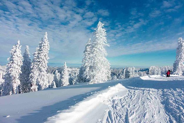Winterwandern Winterlandschaft.jpg