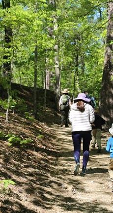 Trails-of-Hot-Springs.jpg