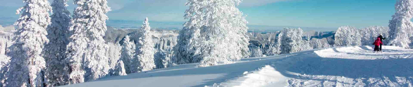 Winterwandern%20Winterlandschaft_edited.