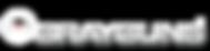grayguns-logo-white.png