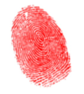 Finger print image