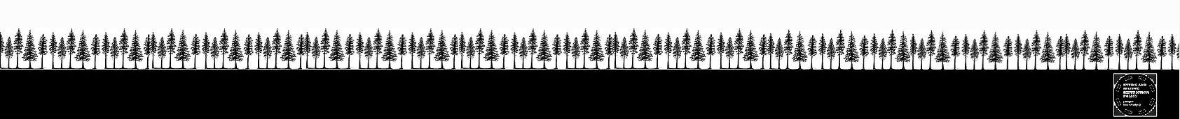 Tree black footer with token_JPEGa.jpg
