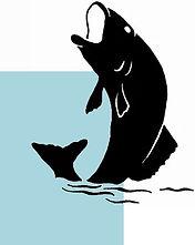 Black SIlloute Fish surfacing_JPEG_Backw