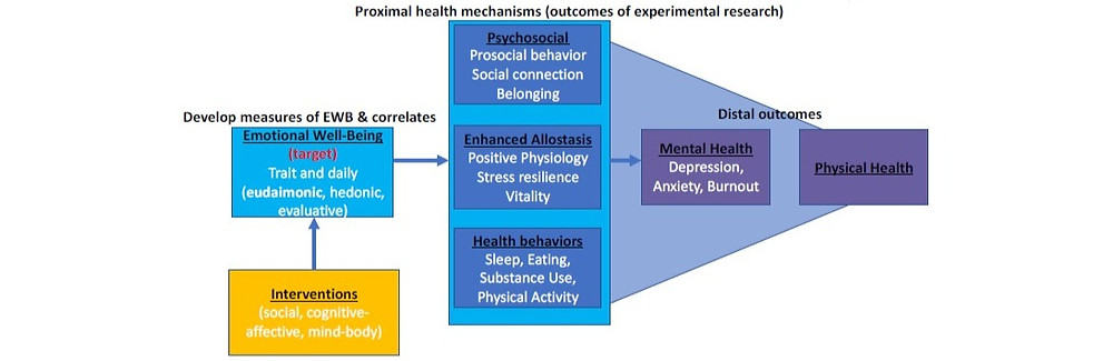 Model of Early Stage Intervention Research