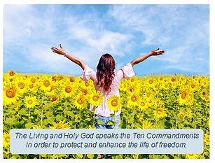 100420 Freedom image.jpg