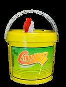 CitrusWirx Bucket - PNG 3.png